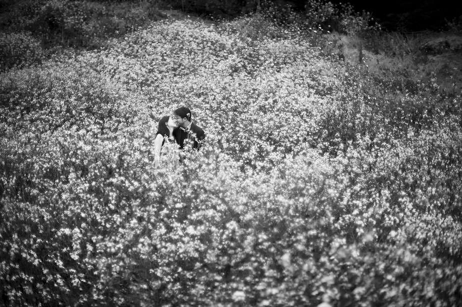 San Francisco Lands End Engagement Photography Wildflowers (15)