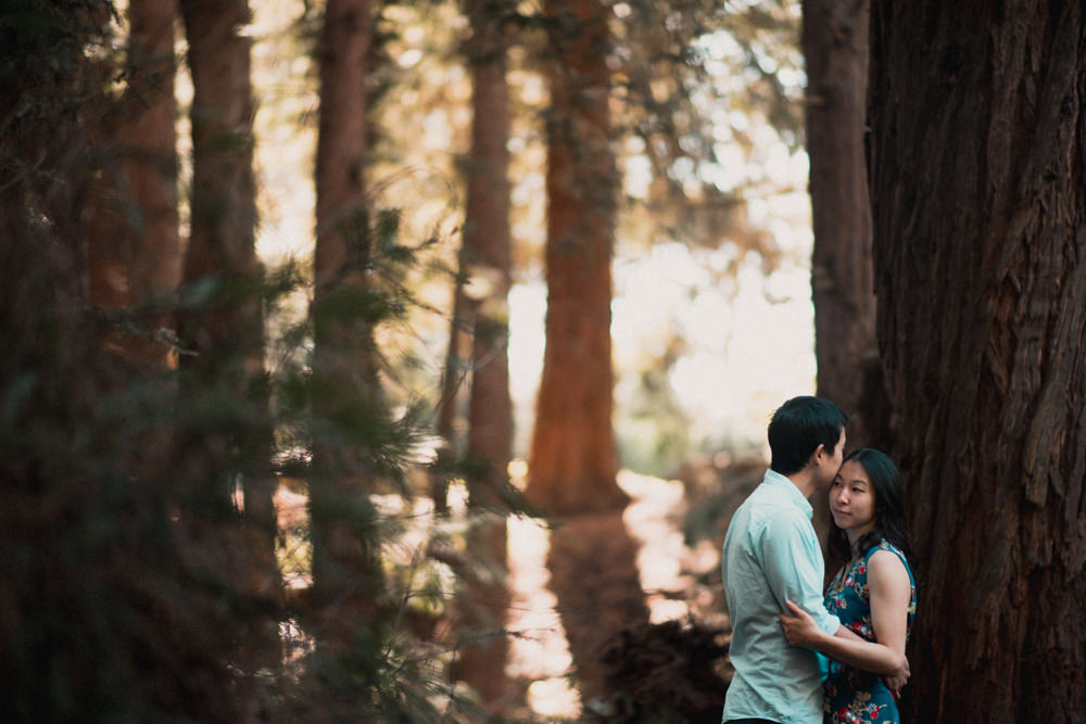 Couple embracing during engagement shoot in Golden Gate Park